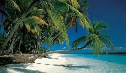 Costa-Rica-Limon-e1456219992341