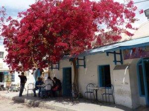 Tunisie Houmt Souk